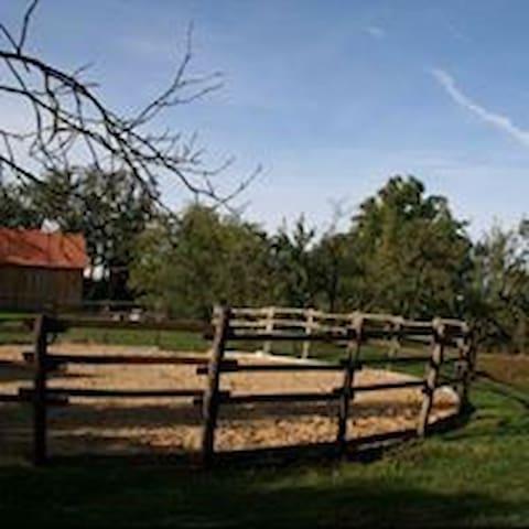Contry ranč Sedmikráska, Zlatnícka dolina, Skalica - Skalica
