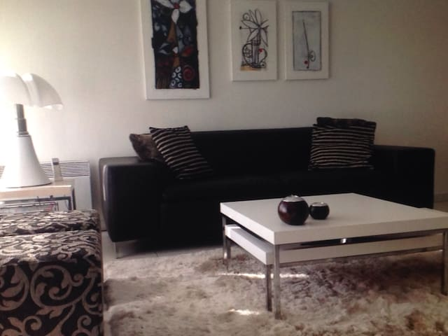 Modern 2 rooms / WIFI / hot water - 温尼伯 - Apartment