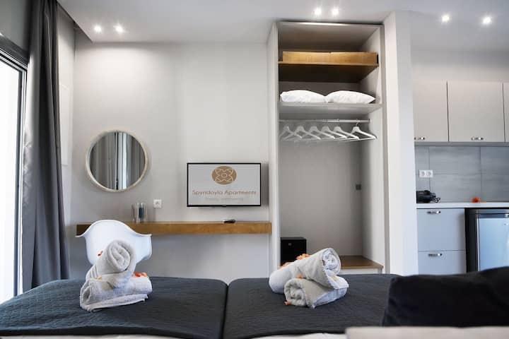 Spyridoyla Apartments 5 (studio apartment)