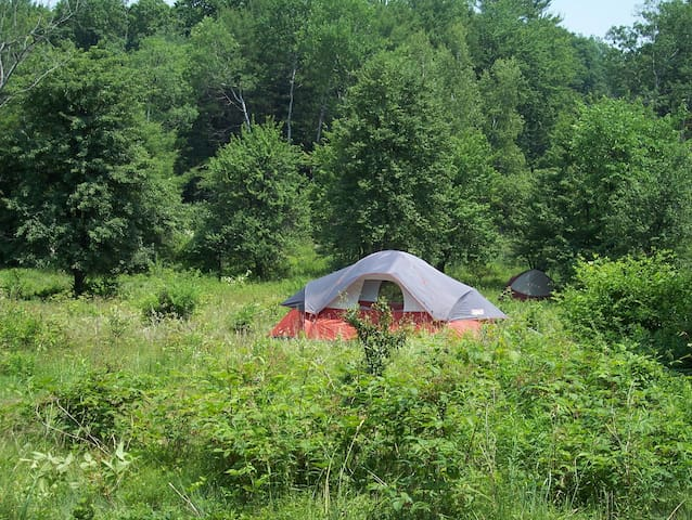Foxtail Farm Stay: Entire Campground