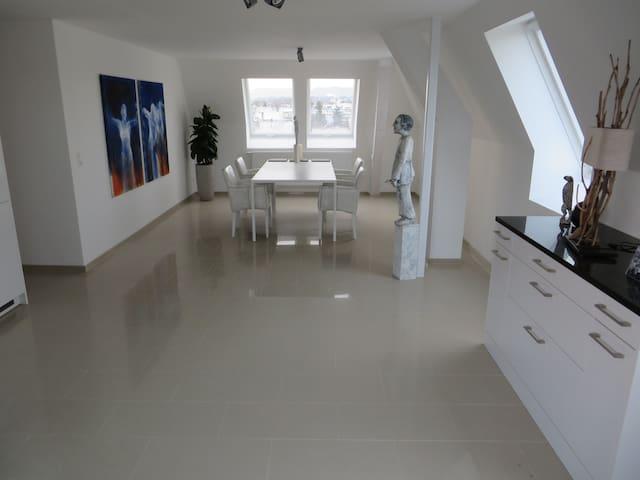 BaselWorld 2floor luxury apartment - Allschwil