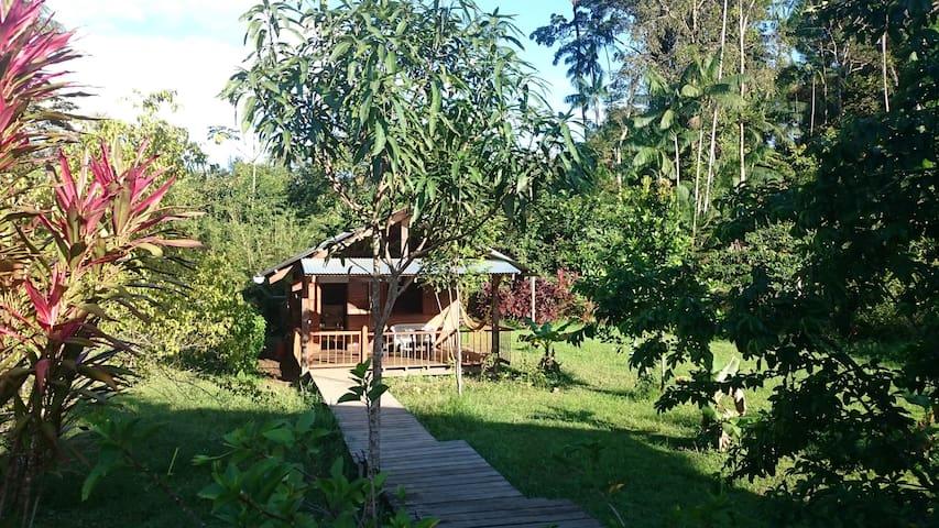un carbet en amazonie - Moges - Dağ Evi