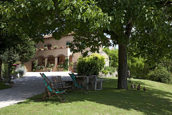 Casa Amedea - 2/4 beds apartment in country Villa - Province of Siena - Lägenhet