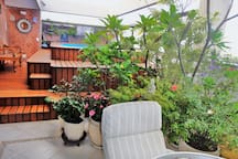 Fantastic Penthouse sea/forest view