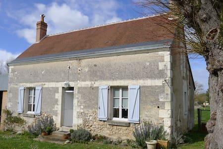 Gîte des Angliers Loire Valley ! - Reignac-sur-Indre - Σπίτι