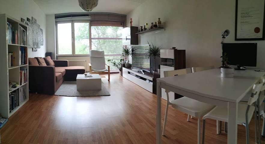 Very modern apartment close to songfestival!