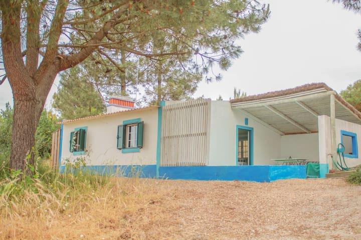 Casa Verde - Comporta - Brejos da Carregueira de Baixo - Casa