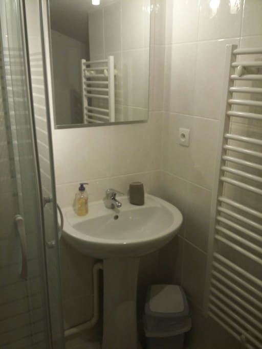 la salle de bains independante avec douche et wc