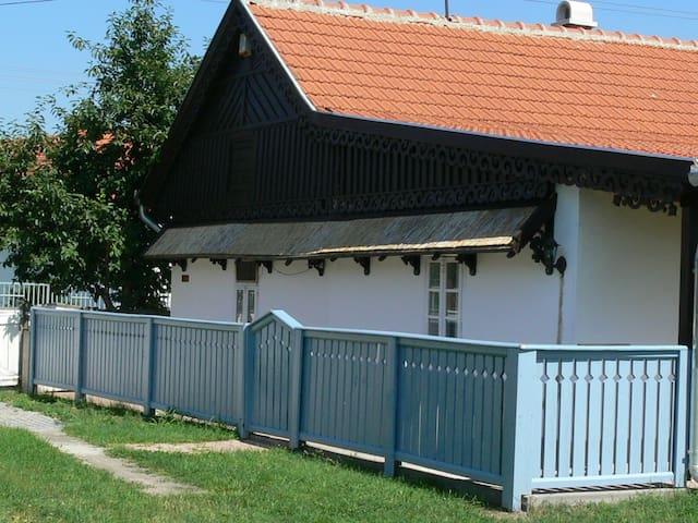 Ferienhaus am Theiß-See