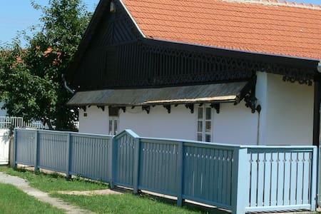 Ferienhaus am Theiß-See - Poroszló - House