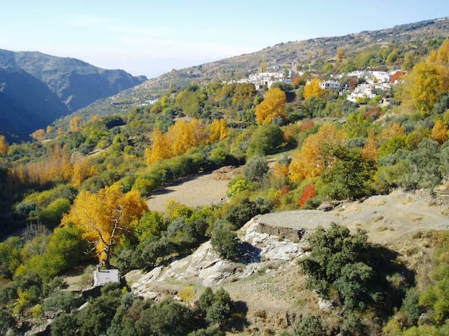 Casa Barbara in The High Alpujarras - Ferreirola, La Taha - บ้าน