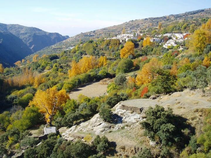 Casa Barbara in The High Alpujarras