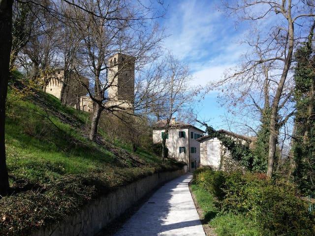Castello di Sarzano: le colline matildiche. - Casina