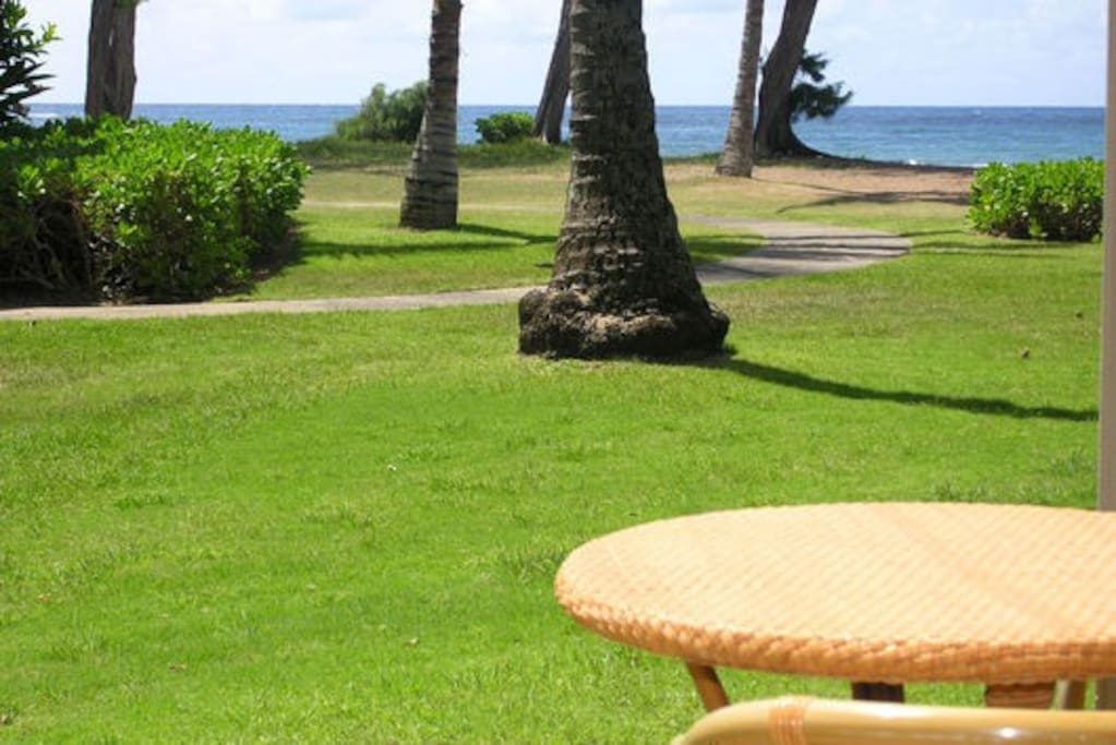 Beautiful ocean and Garden views.  30 paces to feel the froth of the surf at your feet