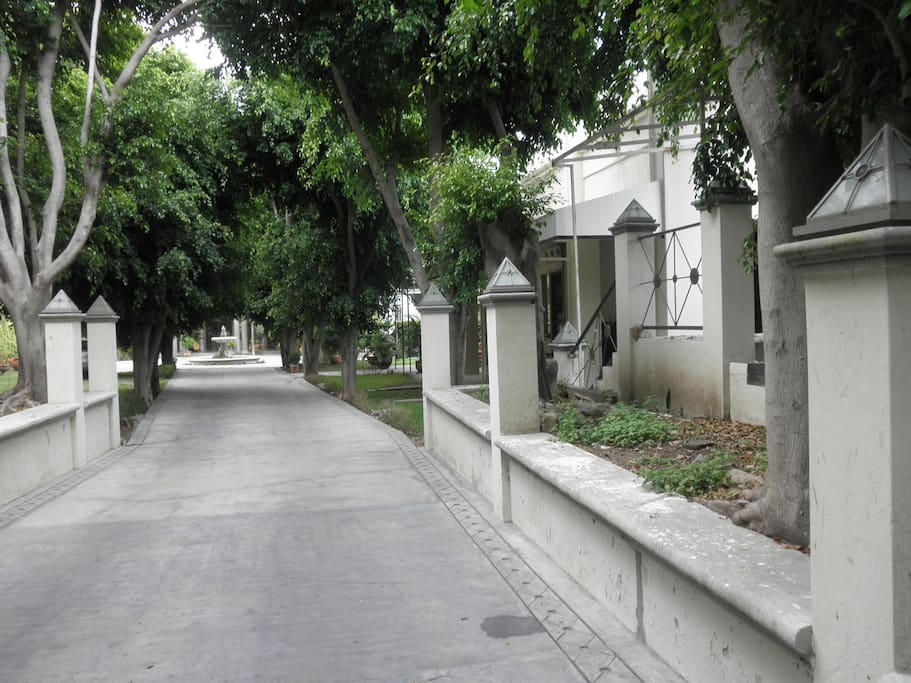 Grand tree lined driveway to glorietta at front entry