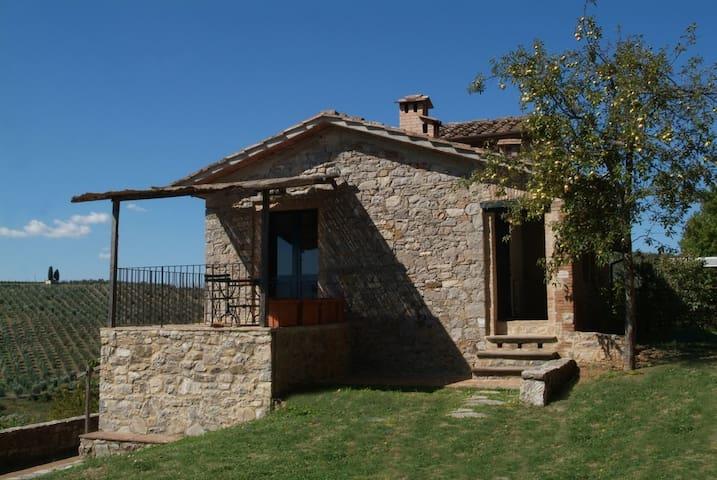 Le Picine in Chianti app. Melo - Castelnuovo Berardenga - Apartment