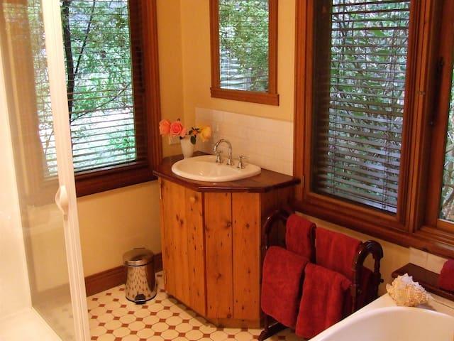 Shower /vanity