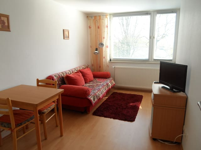 2 Zi. Apartment, zur Messe zu Fuß - Hannover - Appartement
