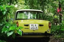 My Vintage car -Premier padmini