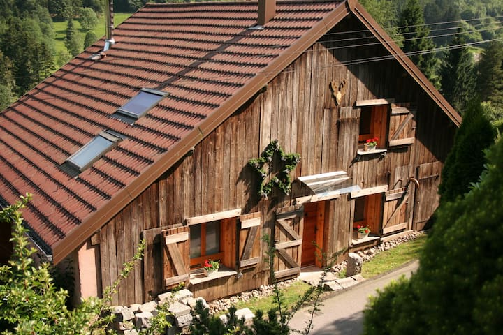 Comfortable holidays Vosges/ Alsace - Rochesson - Huis