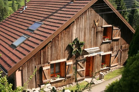 Comfortable holidays Vosges/ Alsace - Rochesson - House