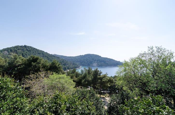 Sunny apartment on Mljet island 1