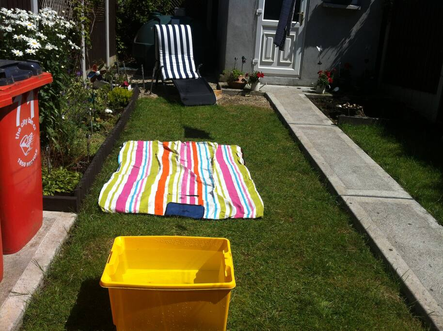 Sunny day in the garden
