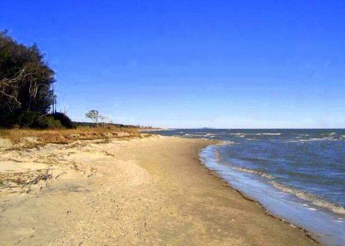 Beach Lovers Touch of Paradise - Hilton Head Island - Villa