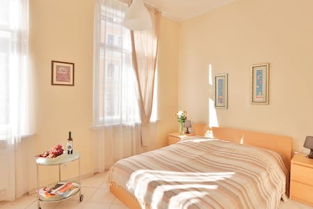 The flat with a spacious bedroom at I.P.Pavlova
