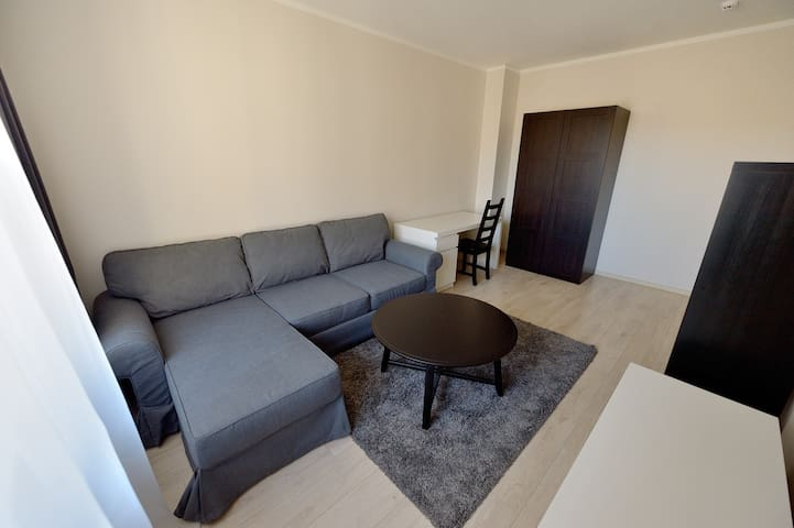 Comfortable Centrally Located Flat in Kaunas City