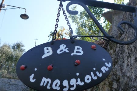 B&B I Maggiolini mare - Camogli