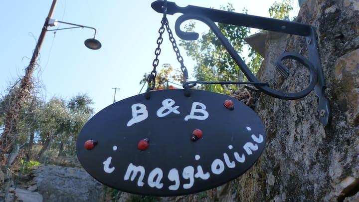 B&B I Maggiolini mare