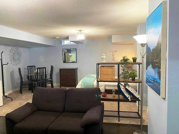 Large and stylish studio apartment