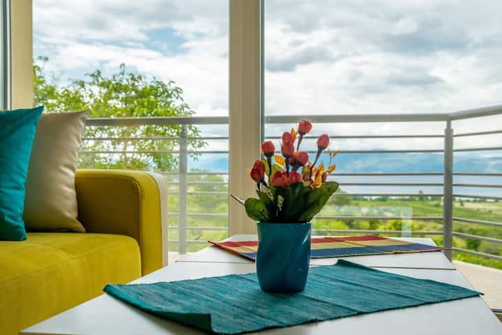 Serenity Apartments Yellow
