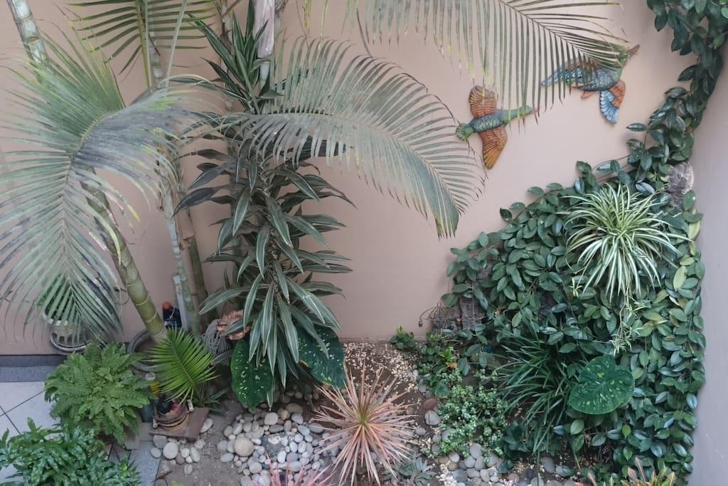 Jardín interno área comedor