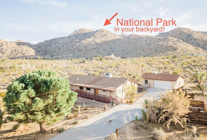 Escape to Joshua Tree - National Park Views