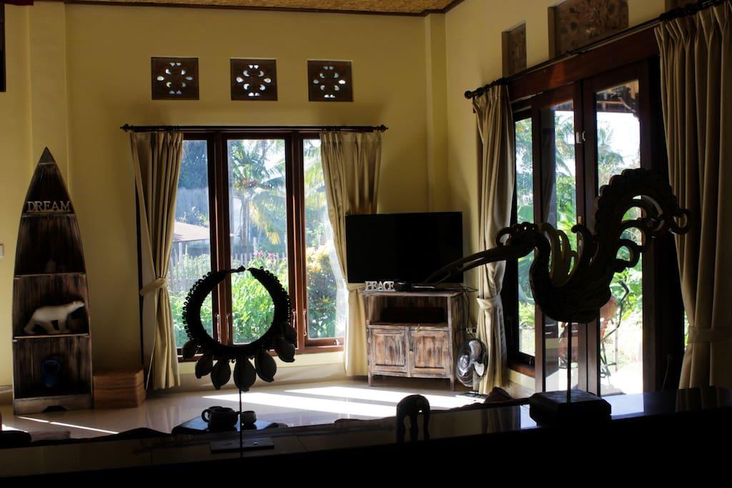 living room ( sofa and TV )