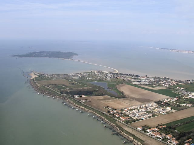 La campagne à la mer - Port-des-Barques - Apartment