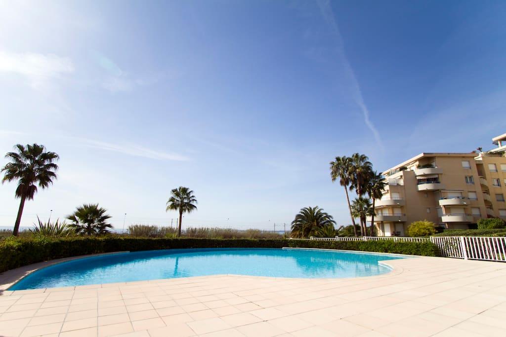 Plongez entre les palmiers dans une vaste piscine à débordement, à 100 mètres des plages...