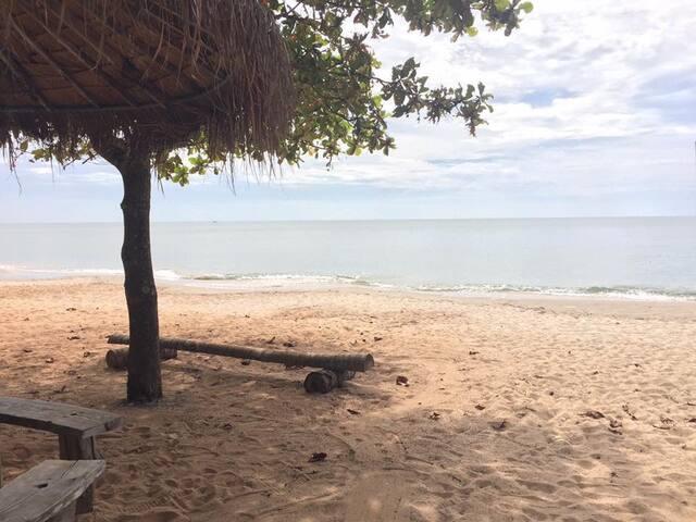 วิวทะเล ( Beach Scenary )