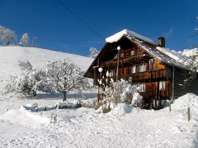 old mountain chalet - Heiligenschwendi - Apartment