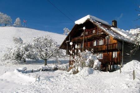 old mountain chalet - Heiligenschwendi