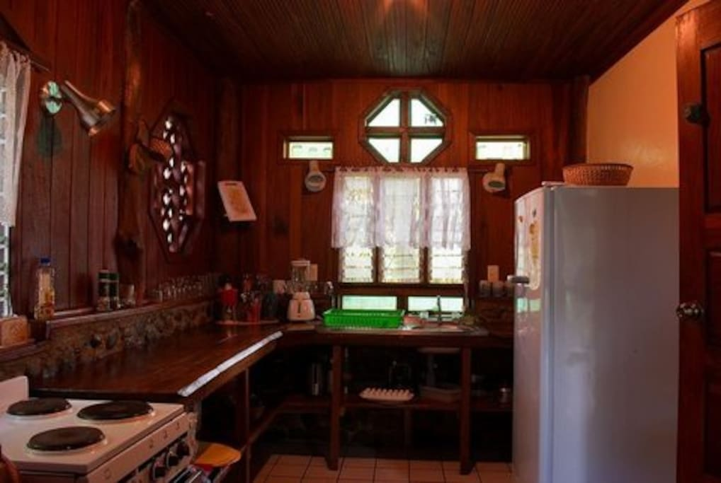 Fully equipped kitchen with all amenities for healthy cooking