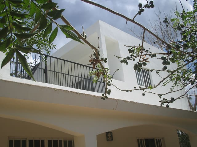 Studio Efficiency - Upstairs - Valladolid - Huis