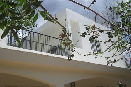 Studio Efficiency - Upstairs - w/AC