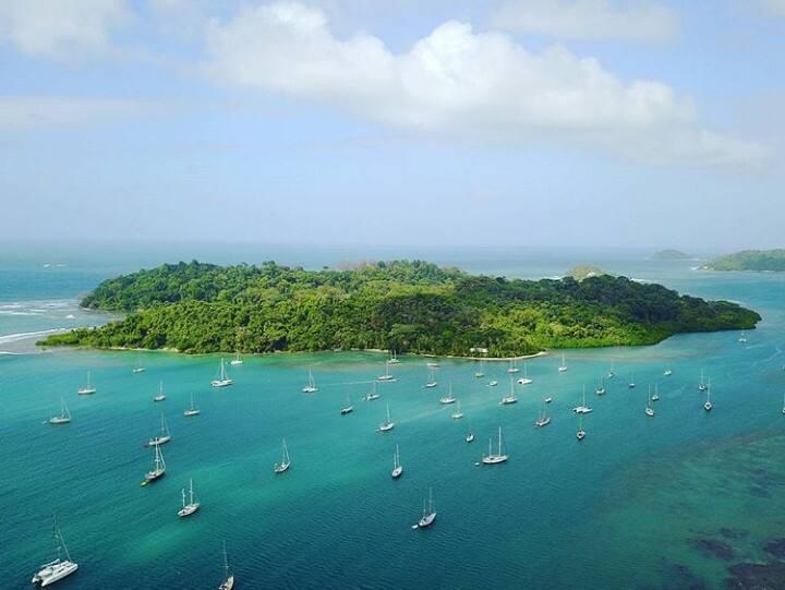 Splendid Bahia Linton