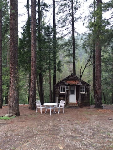 Cute Rustic Cabin in the Woods!  - paxton - Cabin