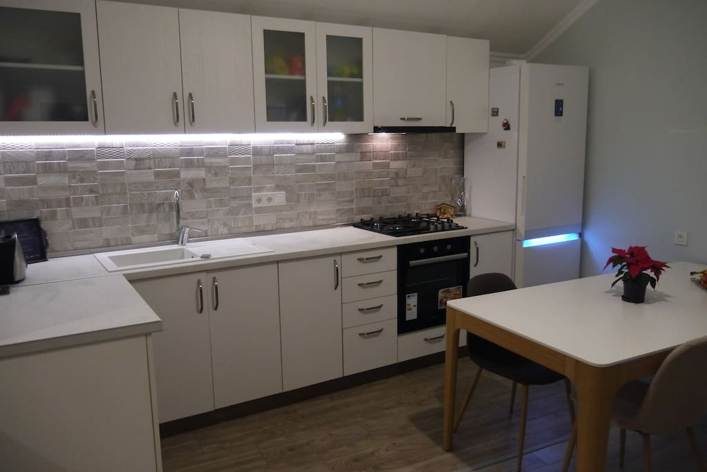Newly renovated apartment with high-quality furniture