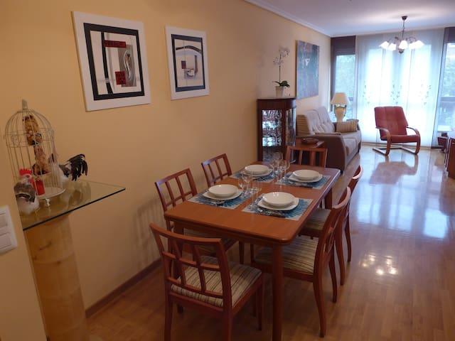 Coqueto y agradable  apartamento