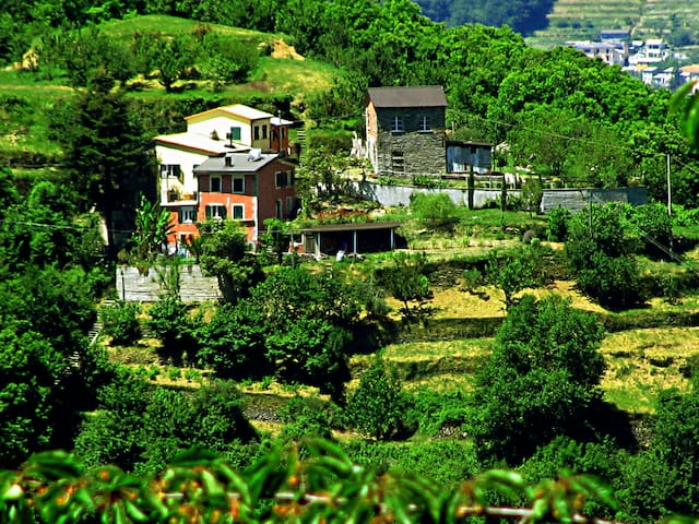 Bucolic EcoHouse 20km from Portofino - Dezerega - บ้าน